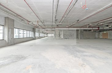 14,750 Sq Ft, Office To Rent in Al Garhoud, Dubai - Half Floor Office |Shell and Core Vacant |Free AC