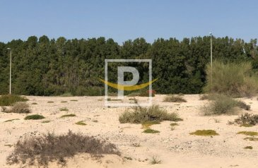 Residential Plot For Sale in Queue Point, Dubailand, Dubai - Zero Commission !! G+9 Residential Plot For Sale in Liwan-1
